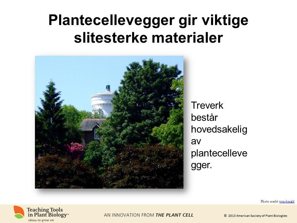 Plantecellevegger gir viktige slitesterke materialer