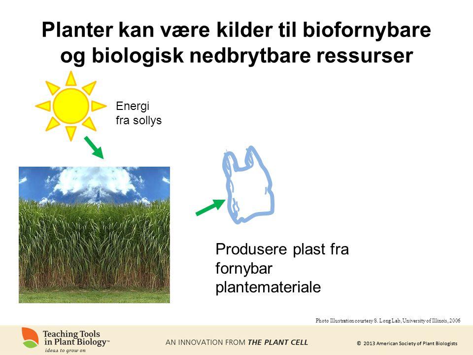 Planter kan være kilder til biofornybare og biologisk nedbrytbare ressurser