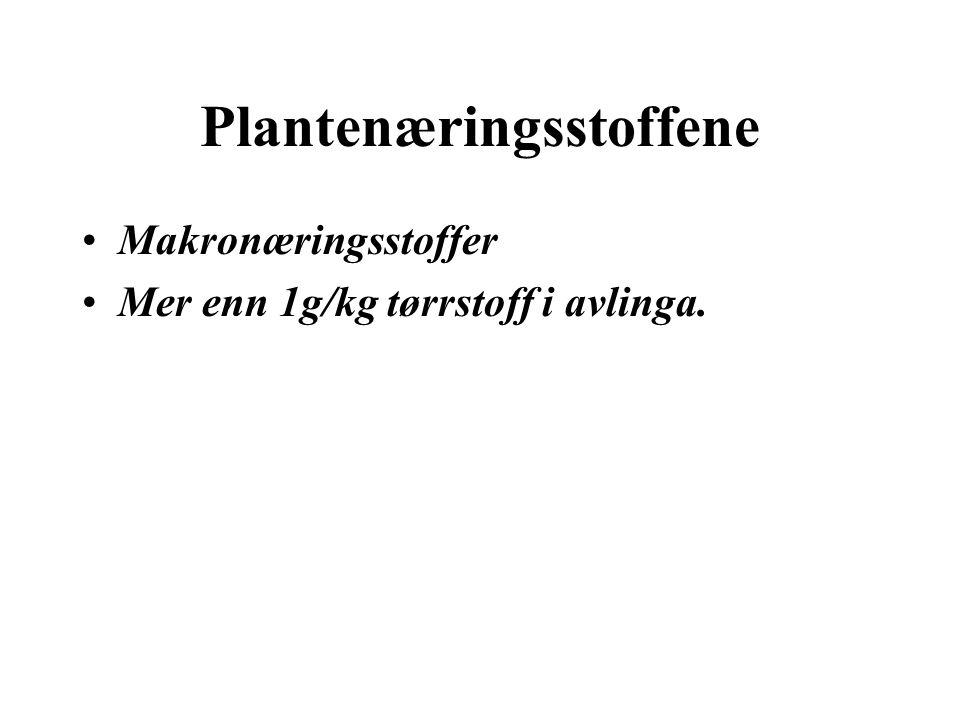 Plantenæringsstoffene