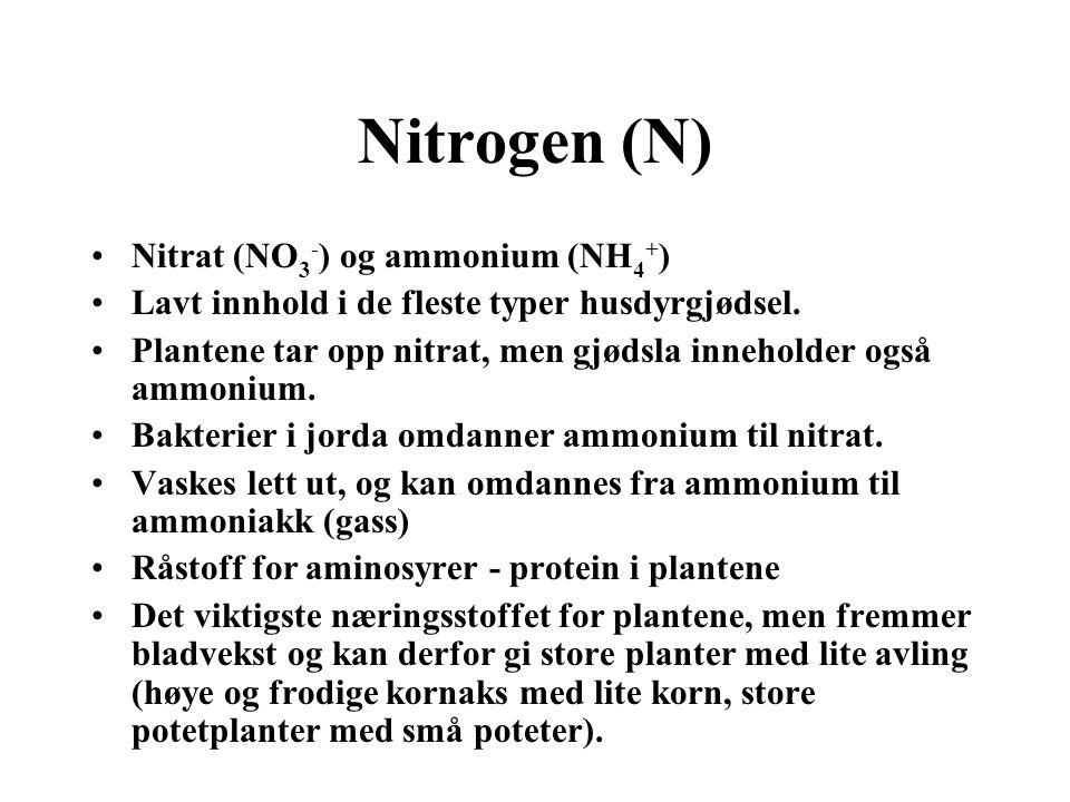 Nitrogen (N) Nitrat (NO3-) og ammonium (NH4+)