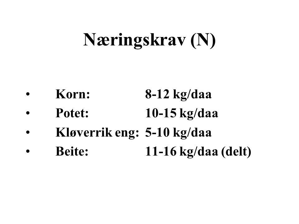 Næringskrav (N) Korn: 8-12 kg/daa Potet: 10-15 kg/daa