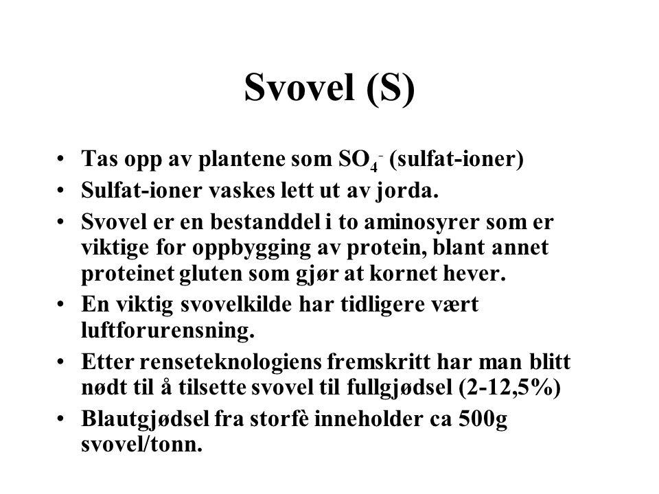 Svovel (S) Tas opp av plantene som SO4- (sulfat-ioner)