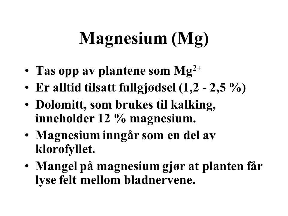 Magnesium (Mg) Tas opp av plantene som Mg2+