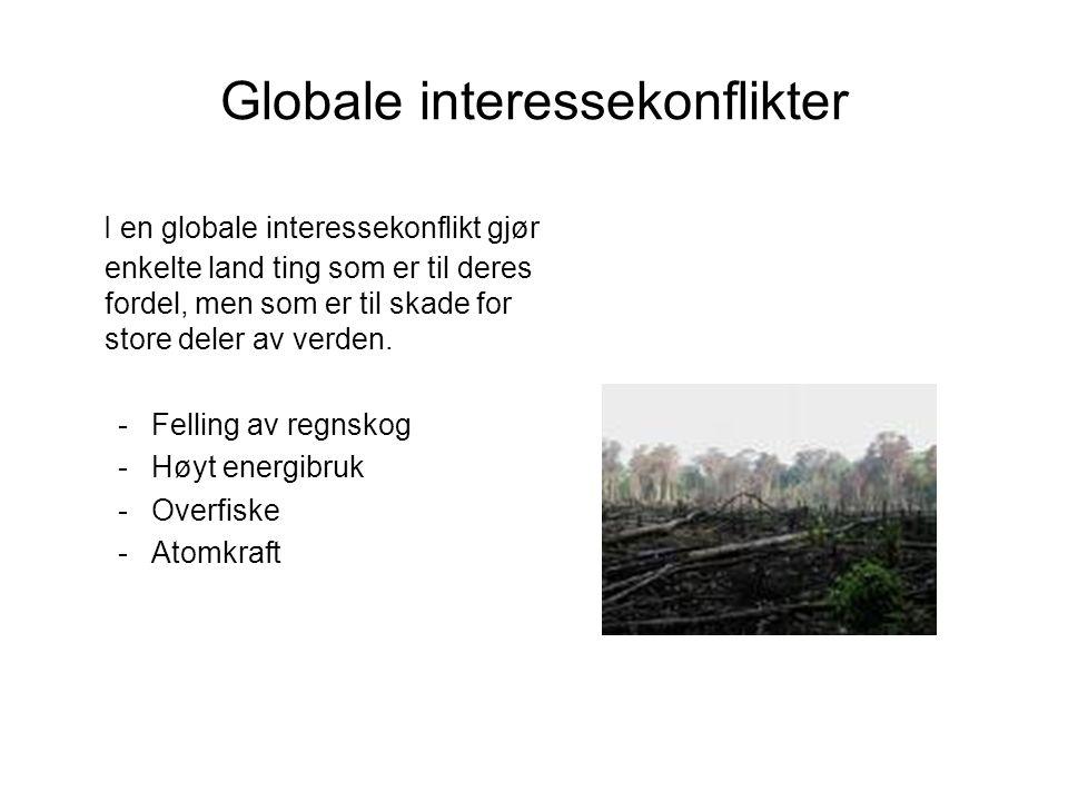 Globale interessekonflikter