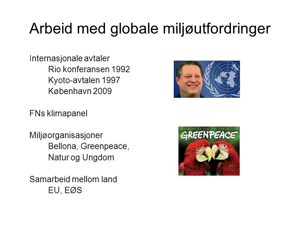 Arbeid med globale miljøutfordringer