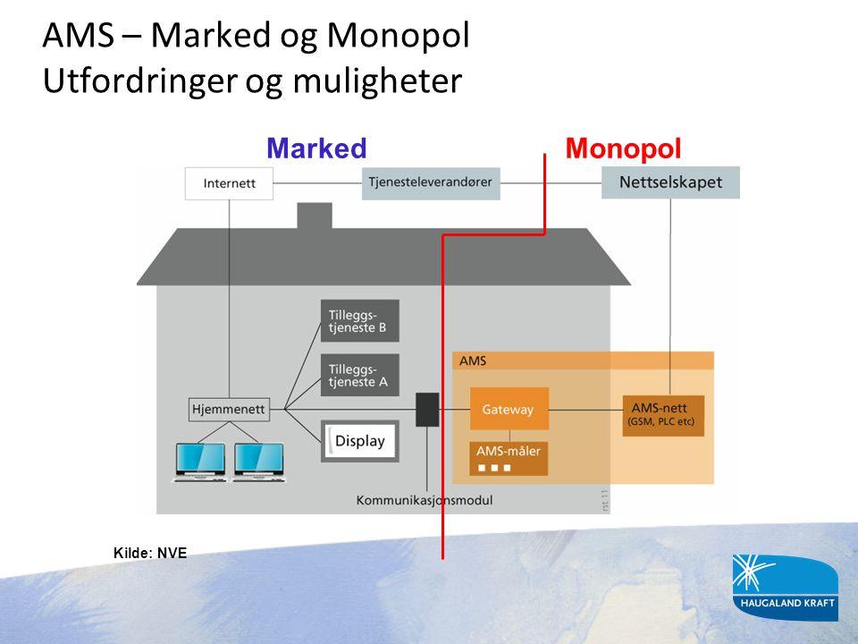 AMS – Marked og Monopol Utfordringer og muligheter