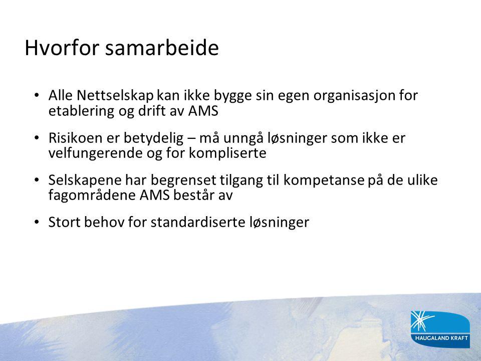 Hvorfor samarbeide Alle Nettselskap kan ikke bygge sin egen organisasjon for etablering og drift av AMS.