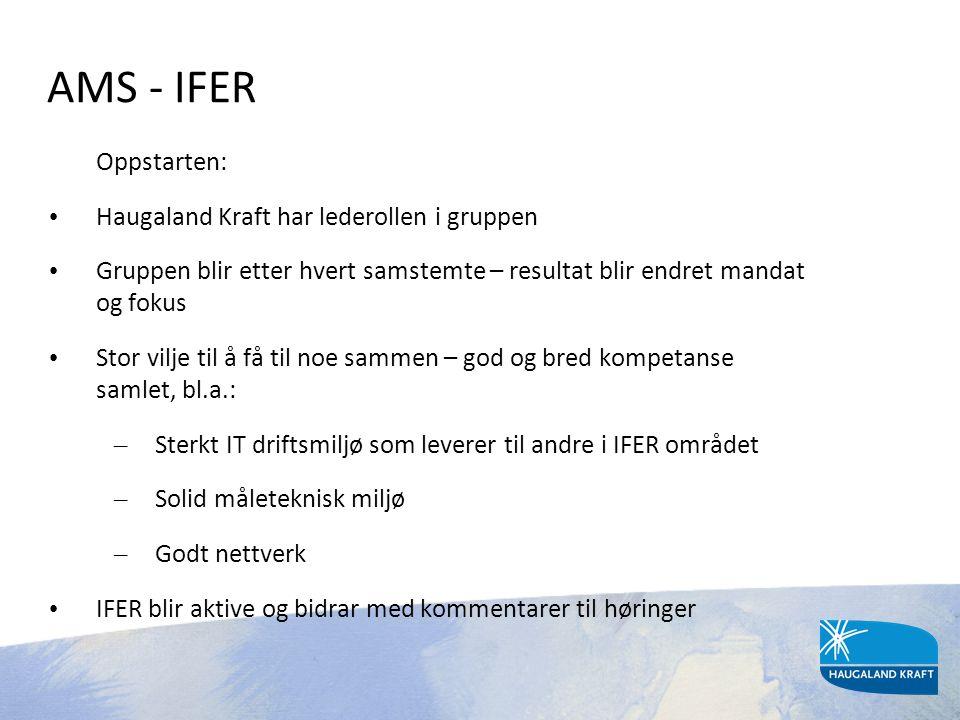 AMS - IFER Oppstarten: Haugaland Kraft har lederollen i gruppen