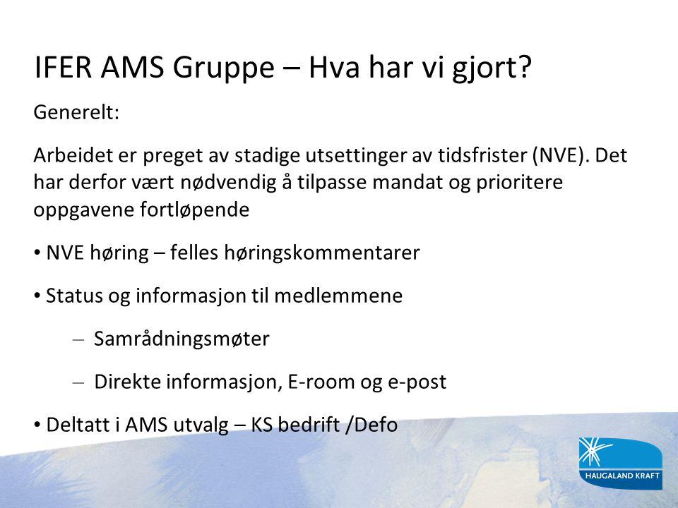 IFER AMS Gruppe – Hva har vi gjort