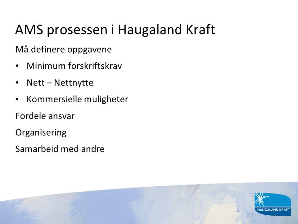 AMS prosessen i Haugaland Kraft
