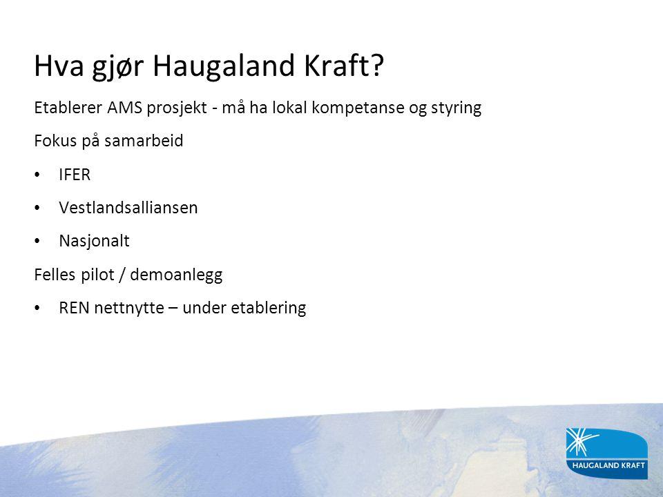 Hva gjør Haugaland Kraft