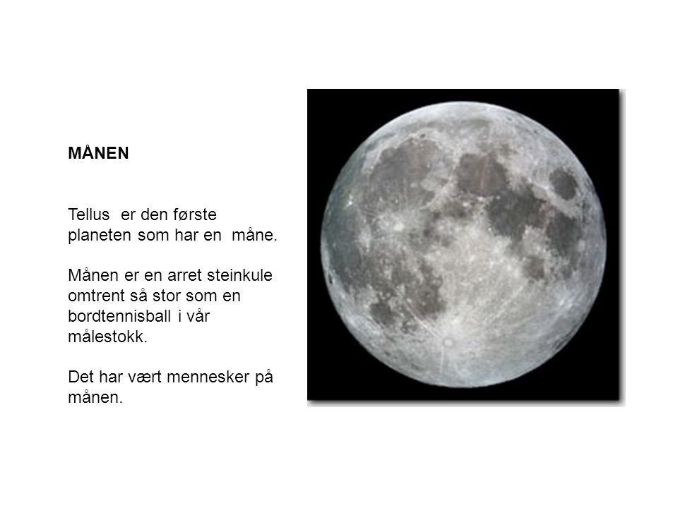 MÅNEN Tellus er den første planeten som har en måne. Månen er en arret steinkule omtrent så stor som en bordtennisball i vår målestokk.