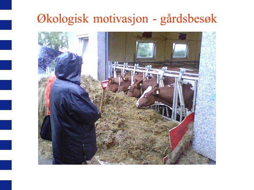 Økologisk motivasjon - gårdsbesøk