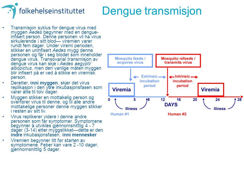 Dengue transmisjon