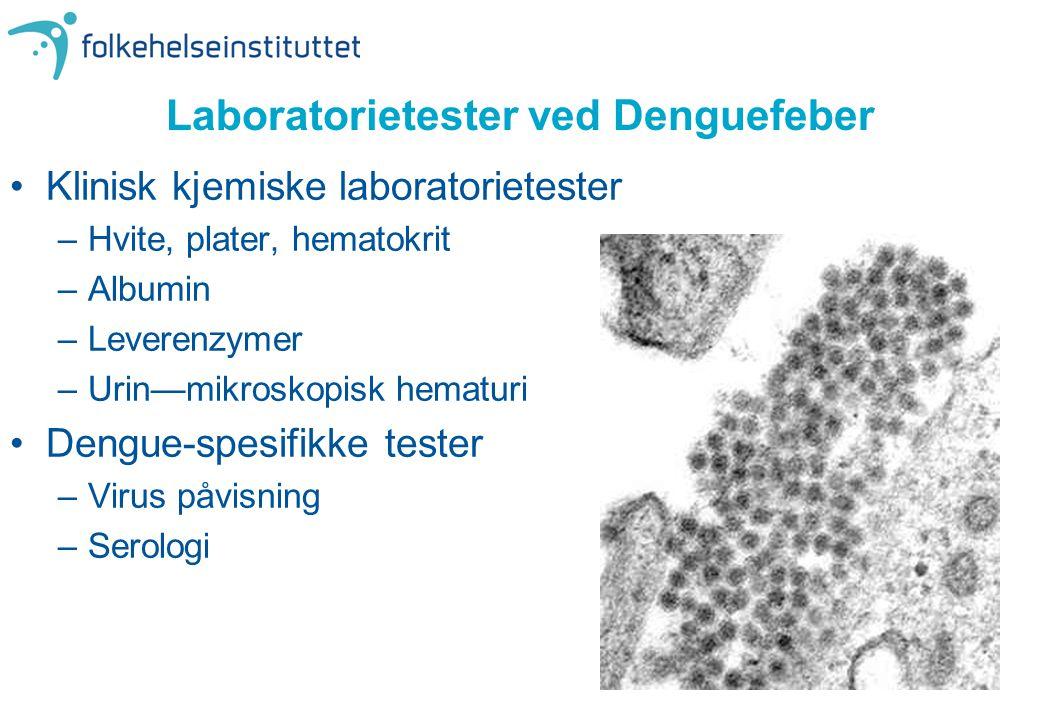 Laboratorietester ved Denguefeber