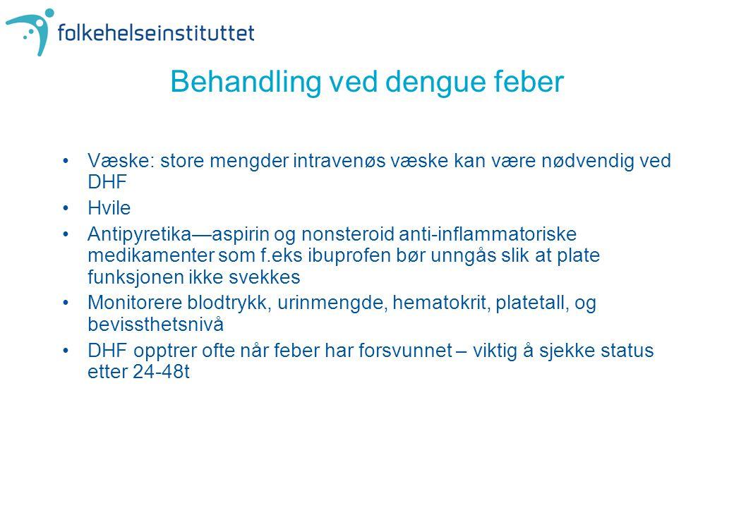 Behandling ved dengue feber