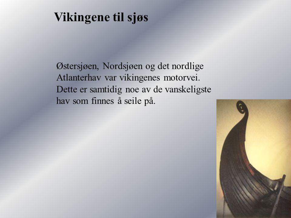 Vikingene til sjøs