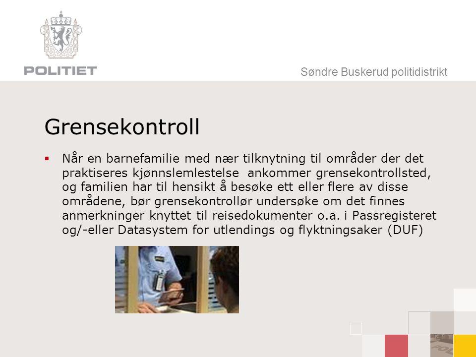 Søndre Buskerud politidistrikt