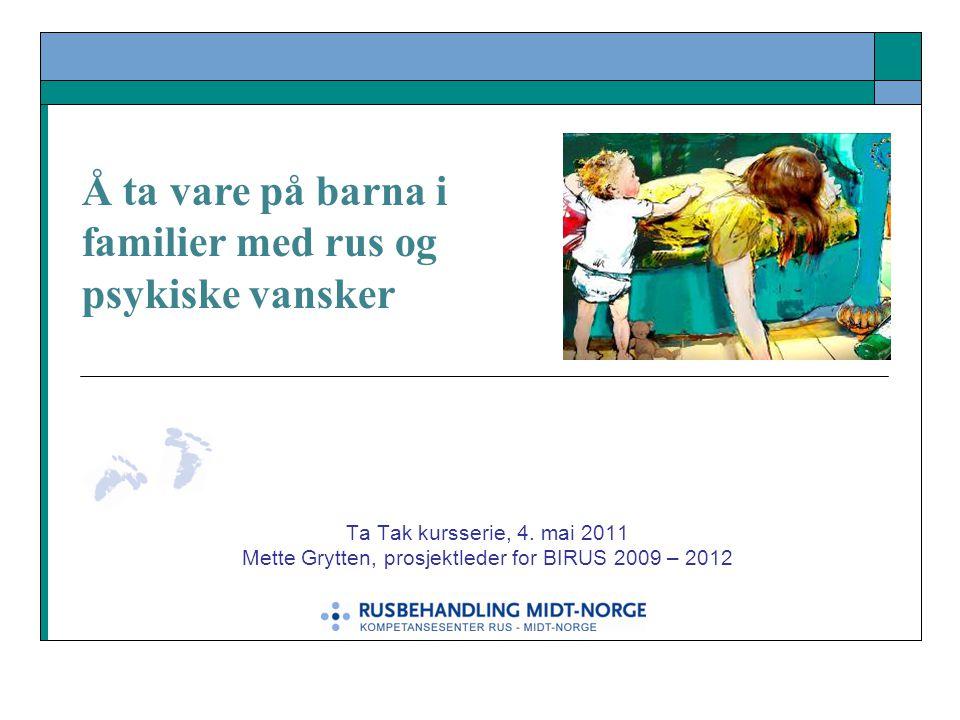 Mette Grytten, prosjektleder for BIRUS 2009 – 2012