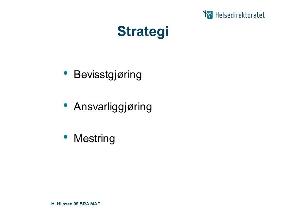 Strategi Bevisstgjøring Ansvarliggjøring Mestring