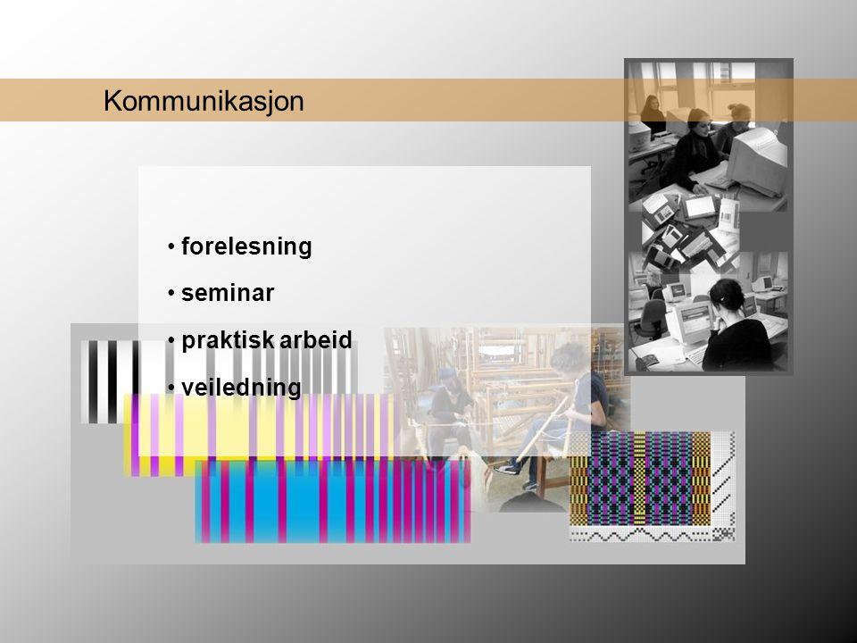 Kommunikasjon forelesning seminar praktisk arbeid veiledning