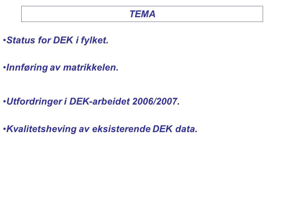 TEMA Status for DEK i fylket. Innføring av matrikkelen.