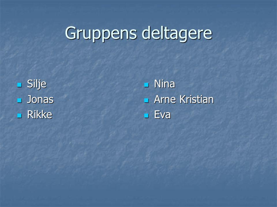 Gruppens deltagere Silje Jonas Rikke Nina Arne Kristian Eva