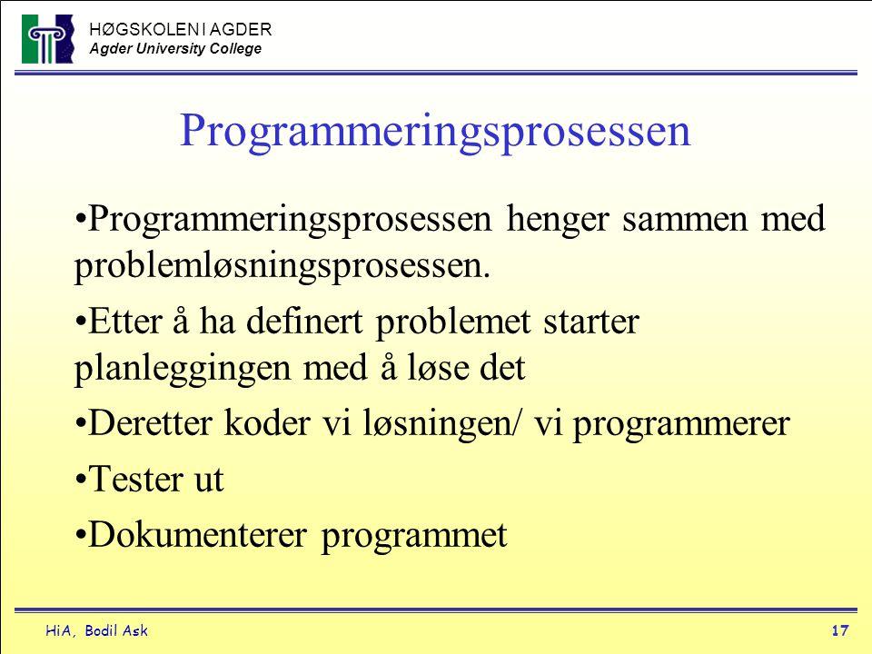 Programmeringsprosessen