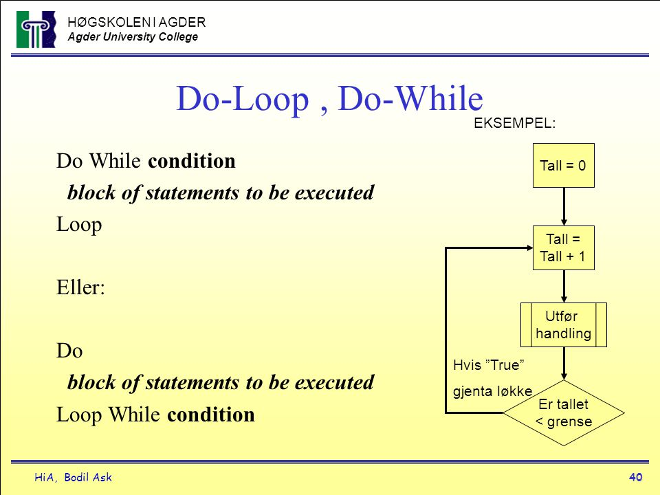 Do-Loop , Do-While Do While condition