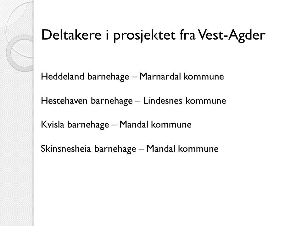 Deltakere i prosjektet fra Vest-Agder