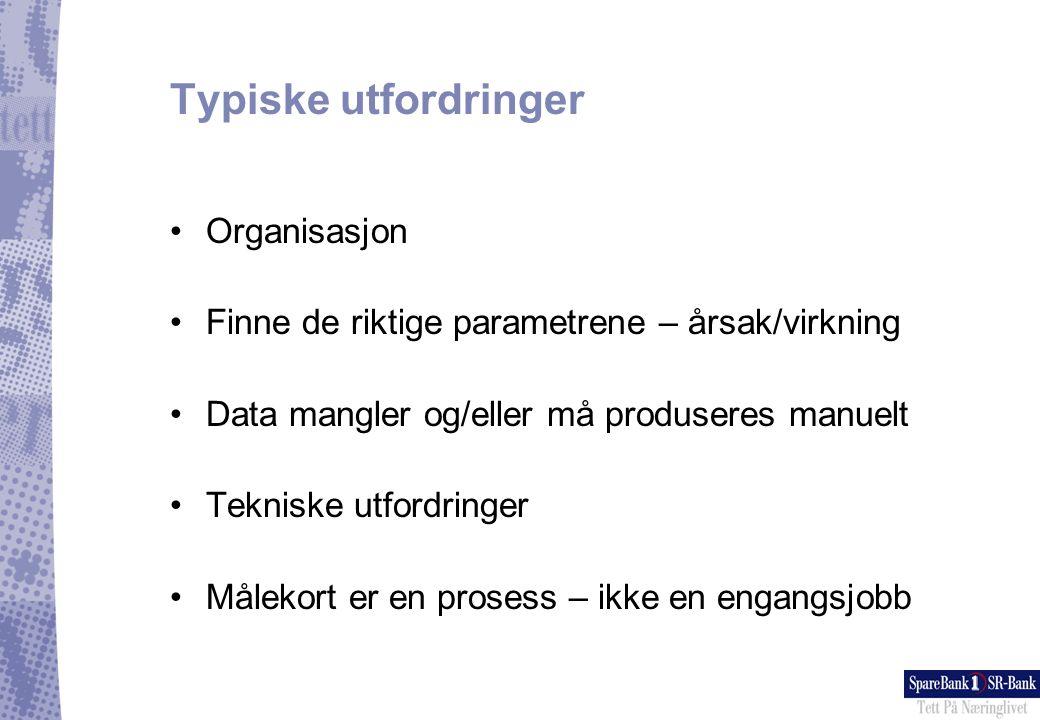 Typiske utfordringer Organisasjon