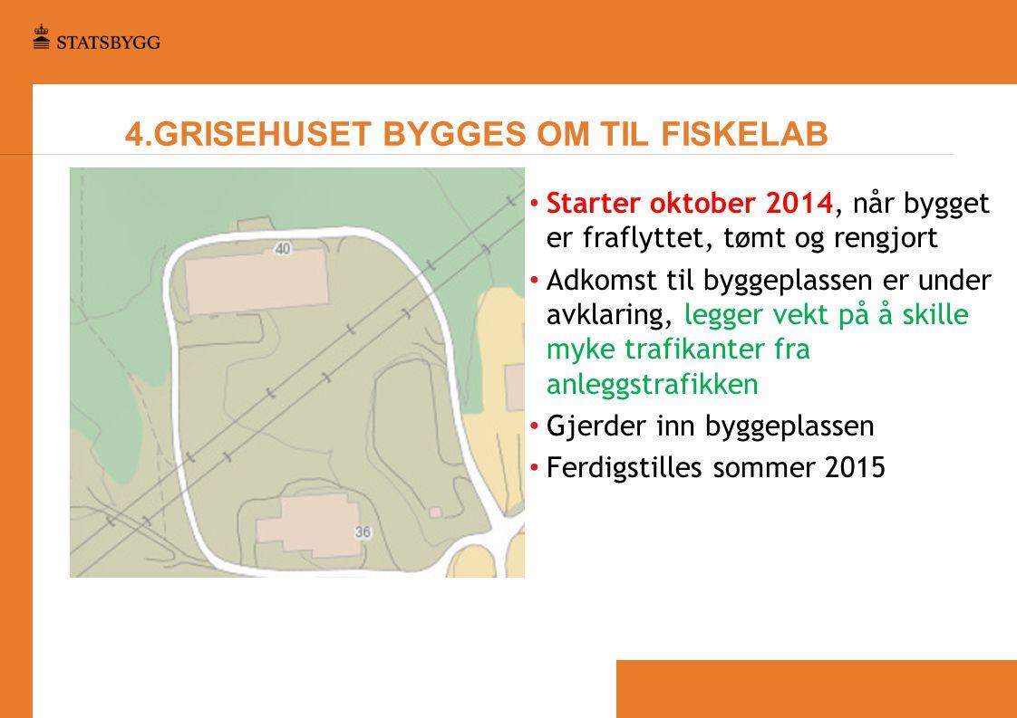 4.GRISEHUSET BYGGES OM TIL FISKELAB