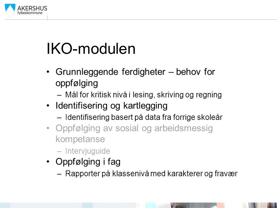 IKO-modulen Grunnleggende ferdigheter – behov for oppfølging