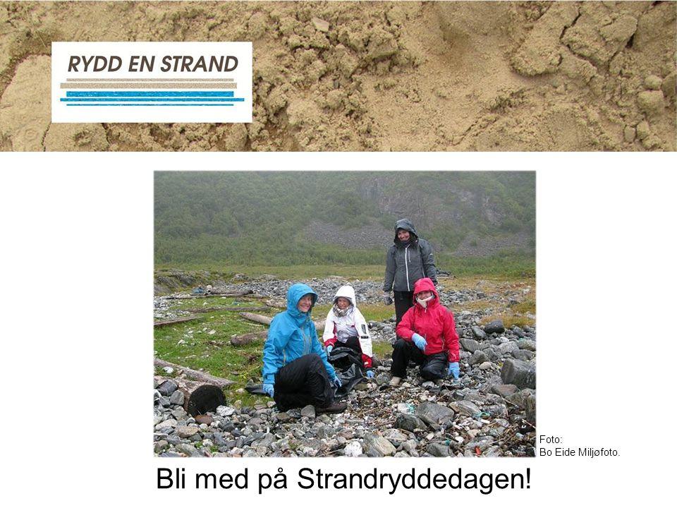 Bli med på Strandryddedagen!