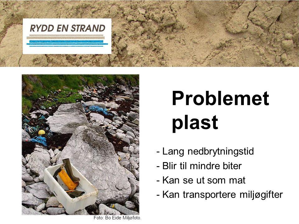 Problemet plast - Lang nedbrytningstid - Blir til mindre biter