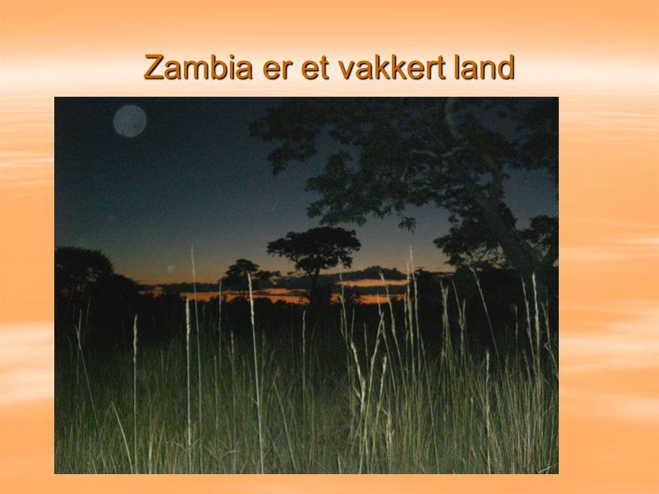 Zambia er et vakkert land