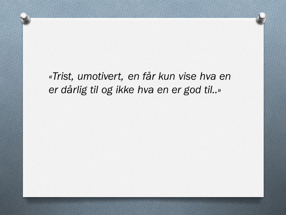 «Trist, umotivert, en får kun vise hva en er dårlig til og ikke hva en er god til..»
