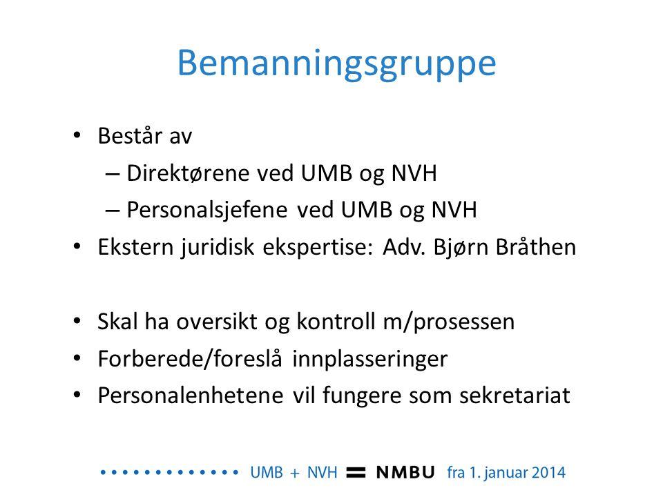 Bemanningsgruppe Består av Direktørene ved UMB og NVH