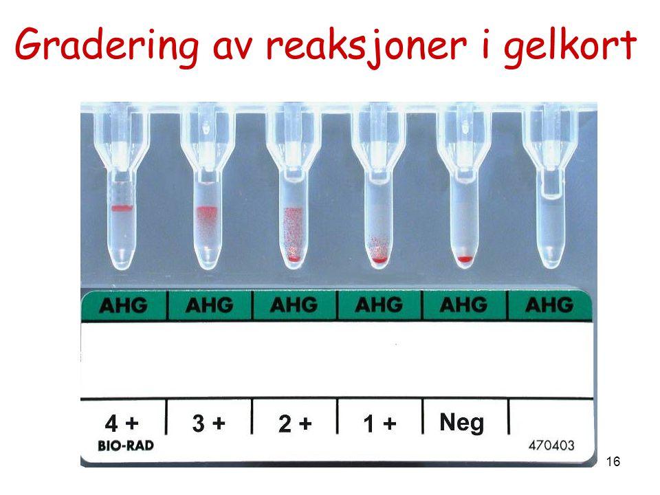 Gradering av reaksjoner i gelkort