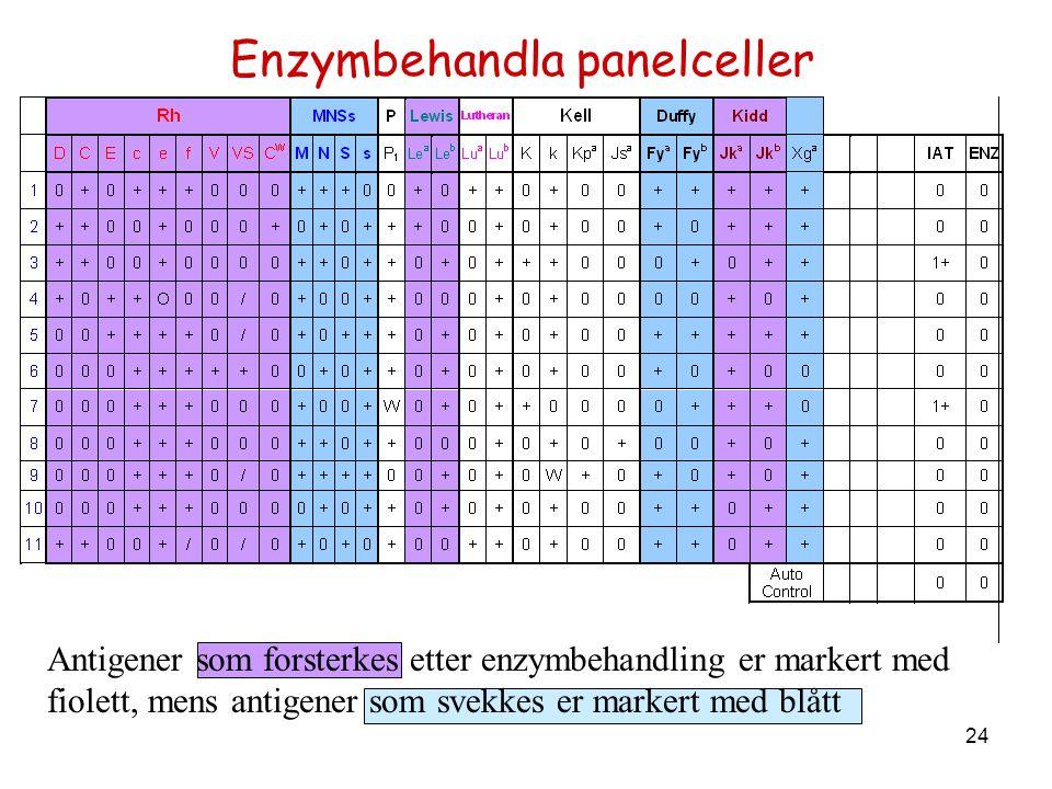 Enzymbehandla panelceller