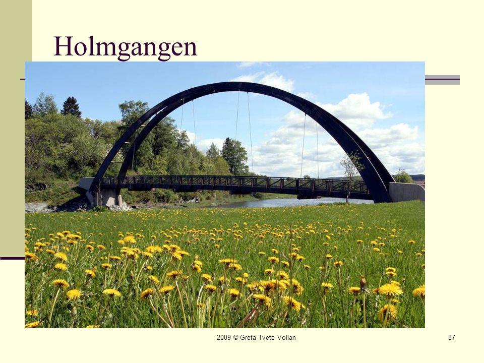 Holmgangen 2009 © Greta Tvete Vollan