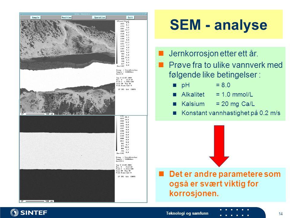 SEM - analyse Jernkorrosjon etter ett år.