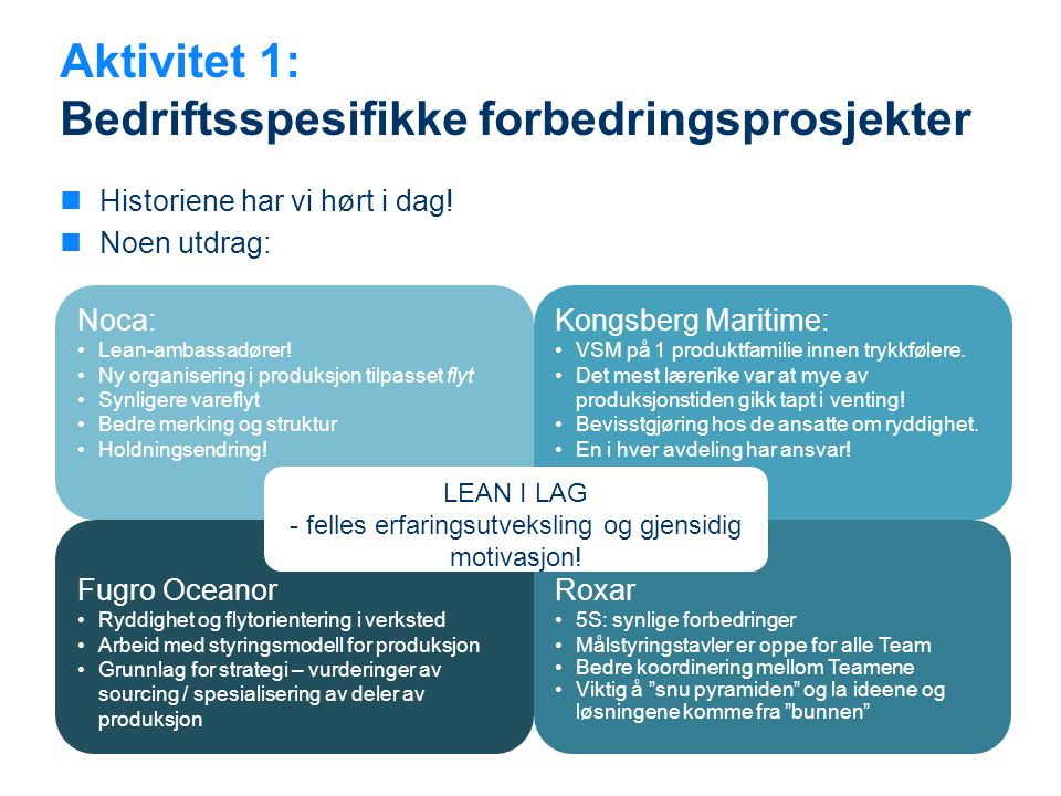 Aktivitet 1: Bedriftsspesifikke forbedringsprosjekter