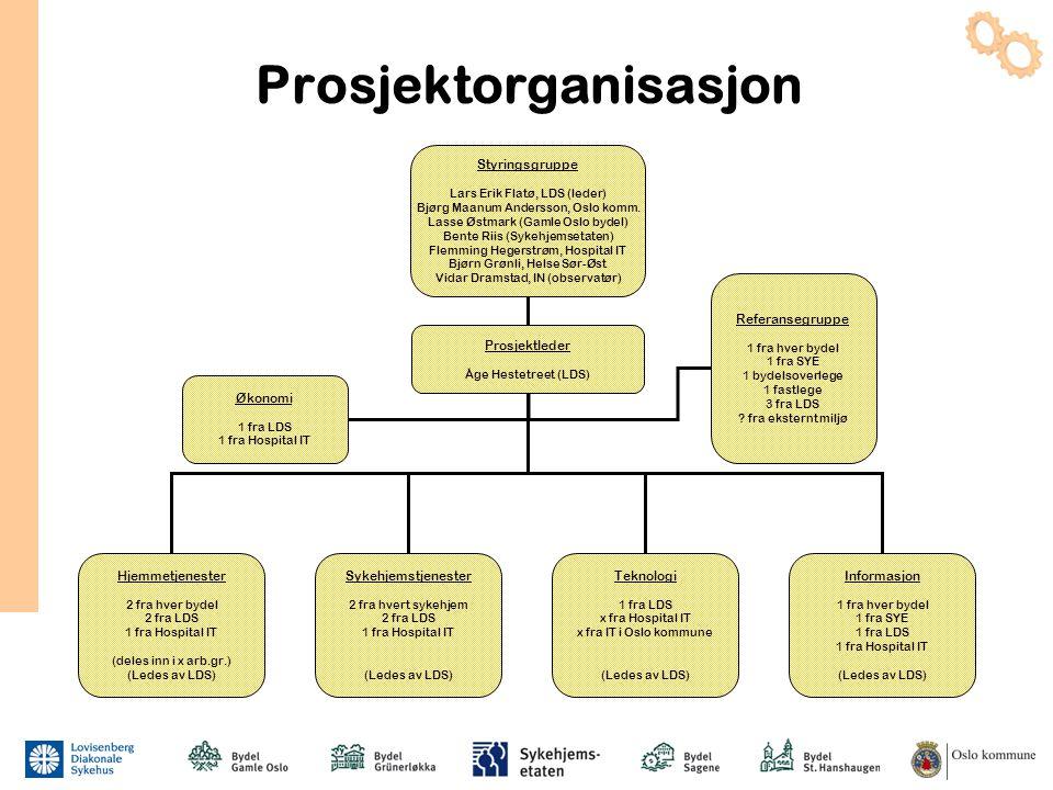 Prosjektorganisasjon