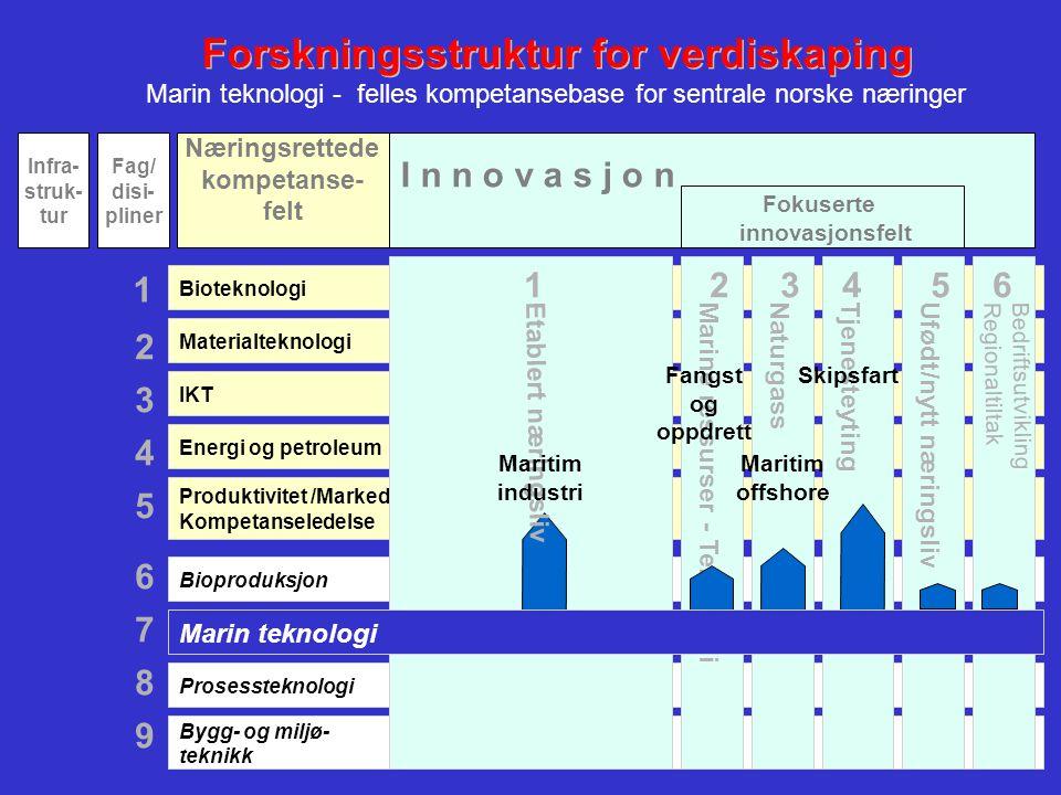 Forskningsstruktur for verdiskaping