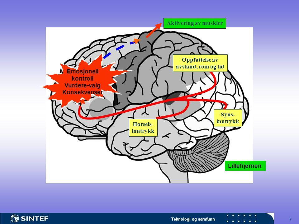 Aktivering av muskler Emosjonell. kontroll. Vurdere-valg. Konsekvenser. Oppfattelse av. avstand, rom og tid.