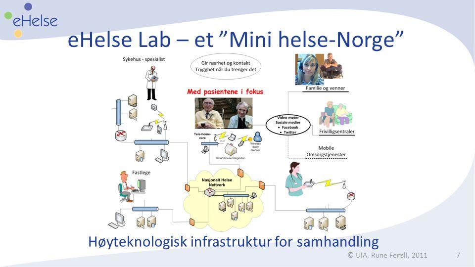 eHelse Lab – et Mini helse-Norge