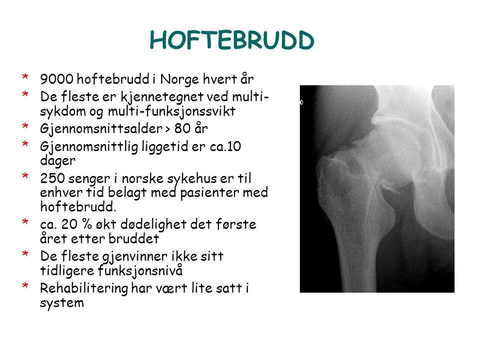 HOFTEBRUDD 9000 hoftebrudd i Norge hvert år