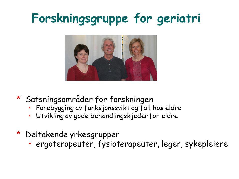 Forskningsgruppe for geriatri
