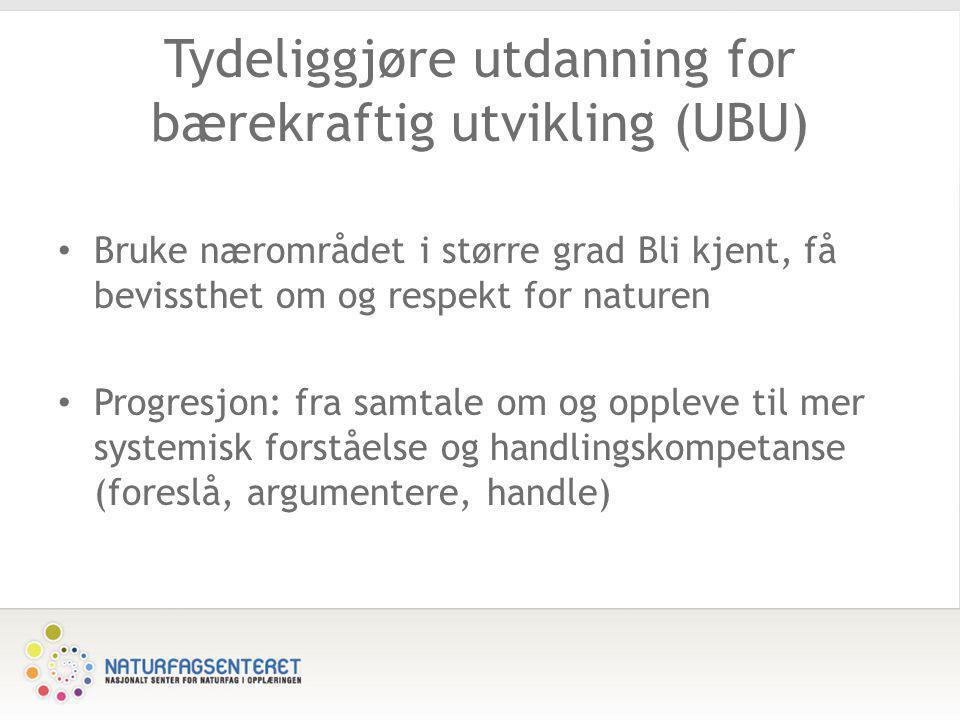 Tydeliggjøre utdanning for bærekraftig utvikling (UBU)